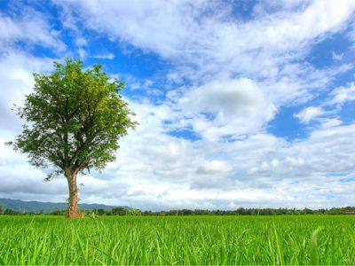 Fotografi Landscape Pemandangan Yogyakarta 02